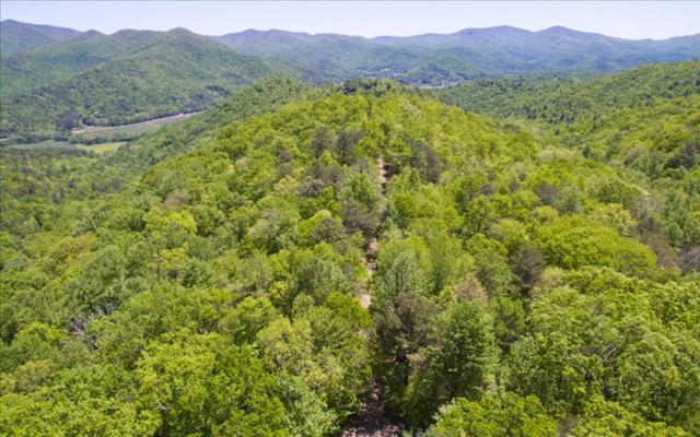 Caesar Gap, Hiawassee, GA 30546 (MLS #268264) :: RE/MAX Town & Country