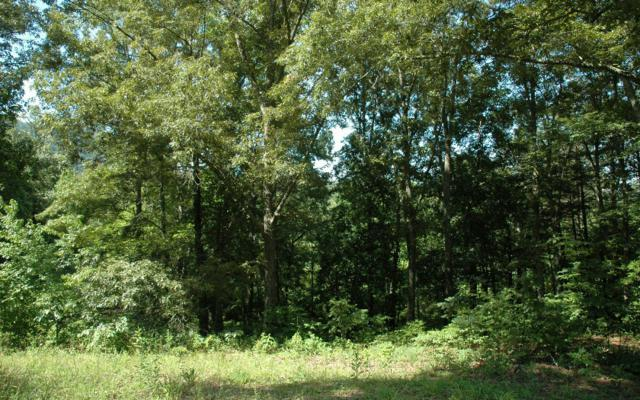 #32 Windsor Drive, Hayesville, NC 28904 (MLS #268526) :: RE/MAX Town & Country