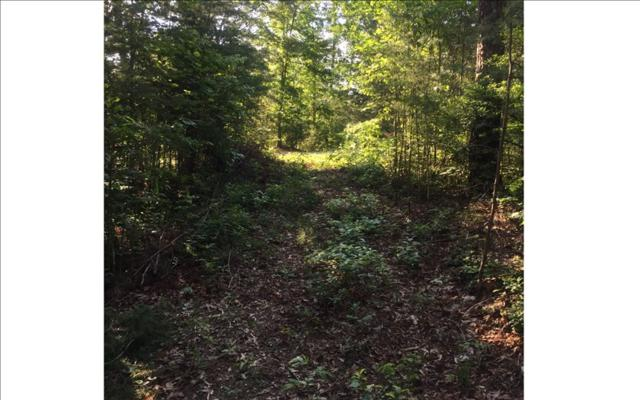 LOT16 Old Brasstown Estate, Young Harris, GA 30582 (MLS #268641) :: RE/MAX Town & Country