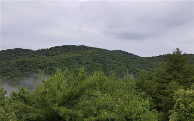 LOT 4 Geronimo Rd, Cherry Log, GA 30522 (MLS #268892) :: RE/MAX Town & Country