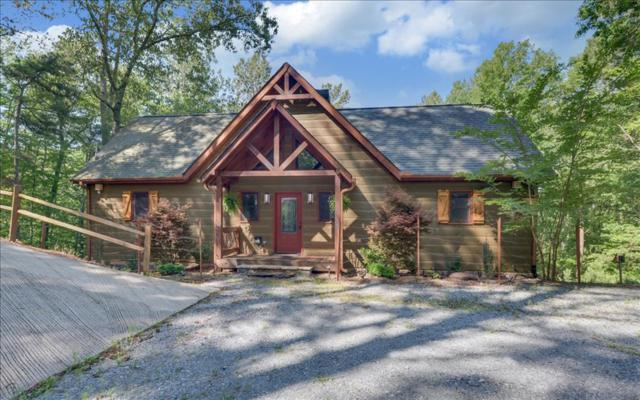 368 Haven Court, East Ellijay, GA 30540 (MLS #269098) :: RE/MAX Town & Country