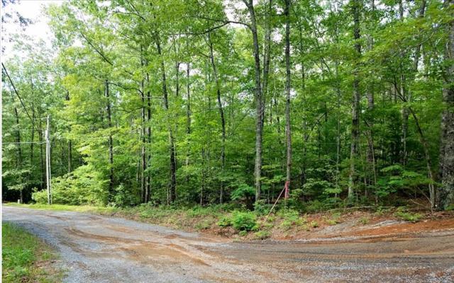 155 Laurel Circle, Blue Ridge, GA 30513 (MLS #269298) :: RE/MAX Town & Country