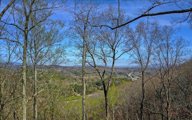 Blue Ridge, GA 30513 :: RE/MAX Town & Country