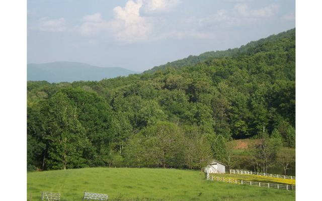 LOT 6 Crestwood/Rich Gap, Blairsville, GA 30512 (MLS #269517) :: RE/MAX Town & Country