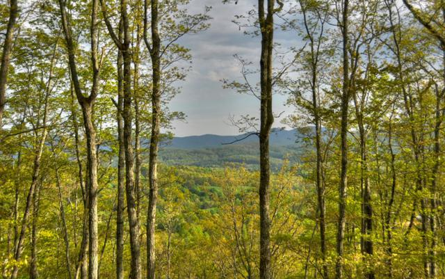 LOT 9 Elgin Mountain, Morganton, GA 30560 (MLS #269598) :: RE/MAX Town & Country