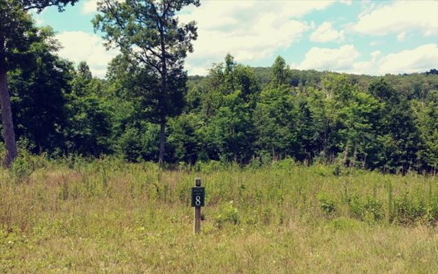 LOT 8 Courtney Lane, Blairsville, GA 30512 (MLS #269848) :: RE/MAX Town & Country