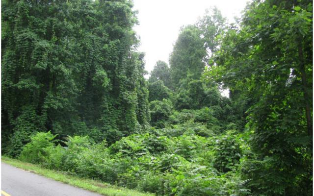 #13F Hy Top Road, Hiawassee, GA 30546 (MLS #269897) :: RE/MAX Town & Country