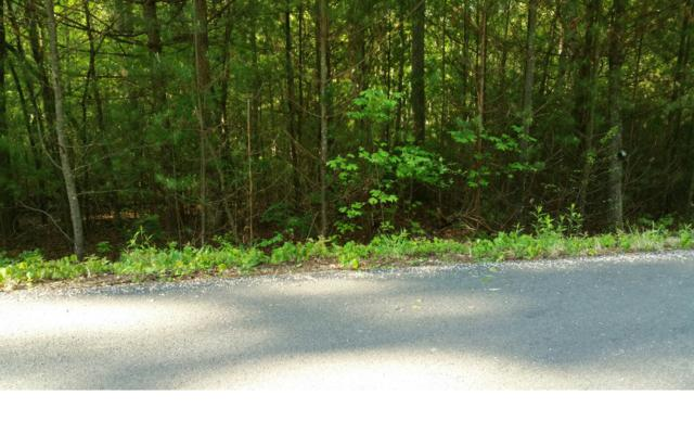 LT 15 Enchanted Woods Dr., Blairsville, GA 30512 (MLS #269946) :: RE/MAX Town & Country