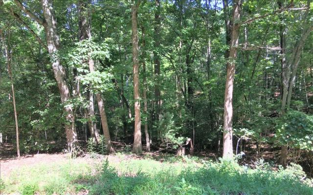 Rocky Top Heights, Blairsville, GA 30512 (MLS #270200) :: RE/MAX Town & Country