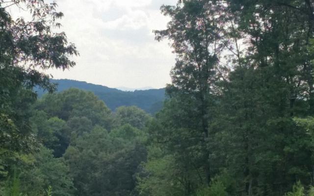 LOT32 River Ridge-Toccoa, Blue Ridge, GA 30513 (MLS #270302) :: RE/MAX Town & Country
