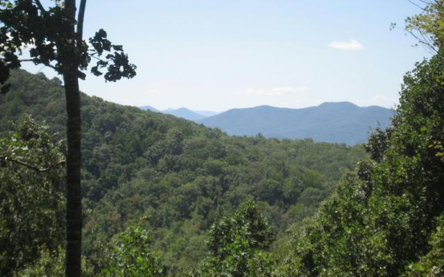 LT 44 E Shiloh Overlook, Hayesville, NC 28904 (MLS #270466) :: RE/MAX Town & Country