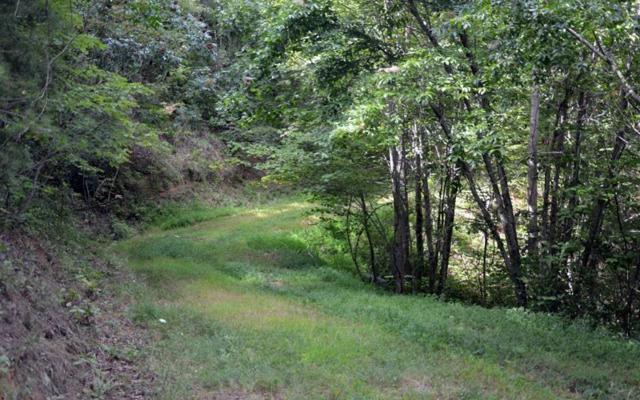 #47 Dan Knob, Hayesville, NC 28904 (MLS #270680) :: RE/MAX Town & Country