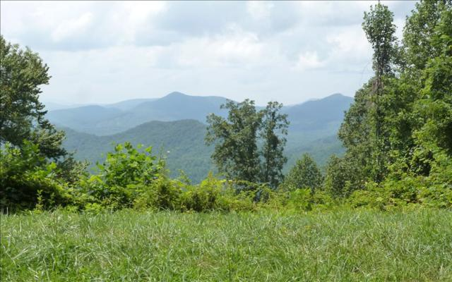 Timberwolf Trail, Murphy, NC 28906 (MLS #270705) :: RE/MAX Town & Country