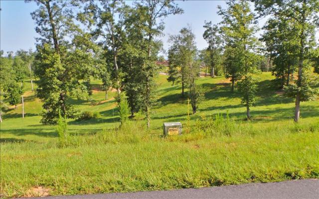LT29 Riverside Lk Nottely, Blairsville, GA 30512 (MLS #270787) :: RE/MAX Town & Country