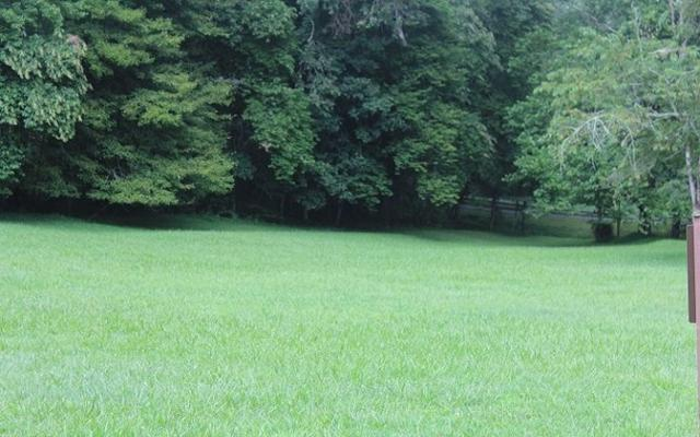 LT 32 Barlow Fields, Hayesville, NC 28904 (MLS #270811) :: RE/MAX Town & Country