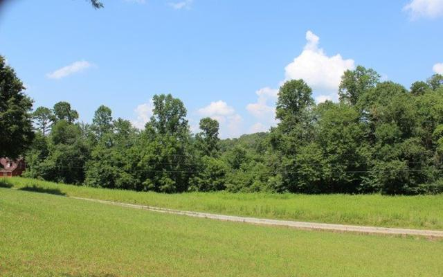 4A Mtn Harbour, Hayesville, NC 28904 (MLS #270815) :: RE/MAX Town & Country