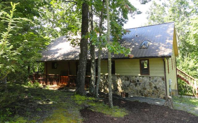 4243 Rocky Knob Dr, Young Harris, GA 30582 (MLS #270821) :: RE/MAX Town & Country