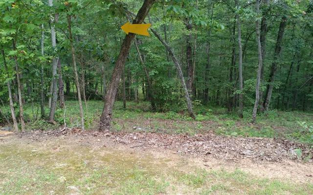 LOT48 Stuart Highlands, Mineral Bluff, GA 30559 (MLS #270913) :: RE/MAX Town & Country