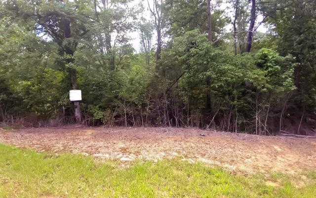 LOT45 Stuart Highlands, Mineral Bluff, GA 30559 (MLS #270917) :: RE/MAX Town & Country