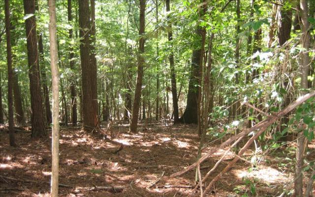 LOT30 Lake View Circle, East Ellijay, GA 30536 (MLS #270923) :: RE/MAX Town & Country