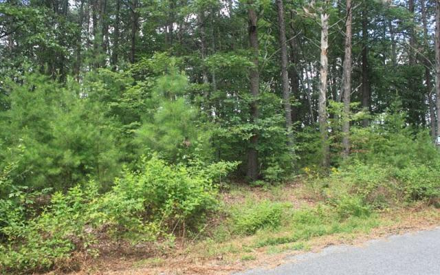 LOT18 Farmer Circle, Mineral Bluff, GA 30559 (MLS #271058) :: RE/MAX Town & Country