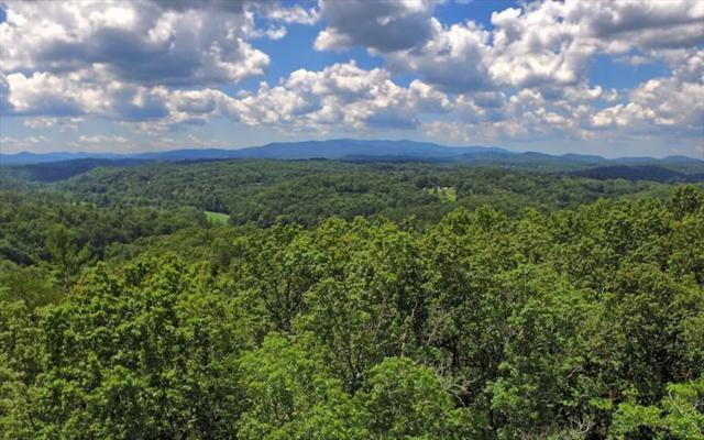 LOT12 Bear Tracks, Mineral Bluff, GA 30559 (MLS #271101) :: RE/MAX Town & Country