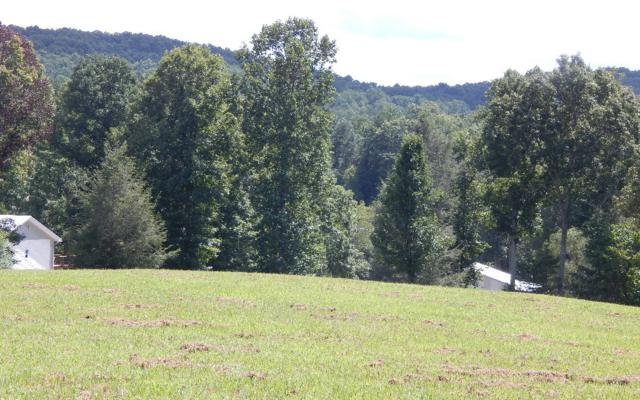 14 Nottely Meadows, Blairsville, GA 30512 (MLS #271173) :: RE/MAX Town & Country