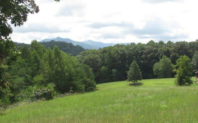 #79 The Preserve At Cc, Young Harris, GA 30582 (MLS #271294) :: RE/MAX Town & Country