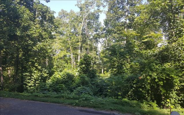 LT 84 Dan Knob/Little Deer, Hayesville, NC 28904 (MLS #271297) :: RE/MAX Town & Country