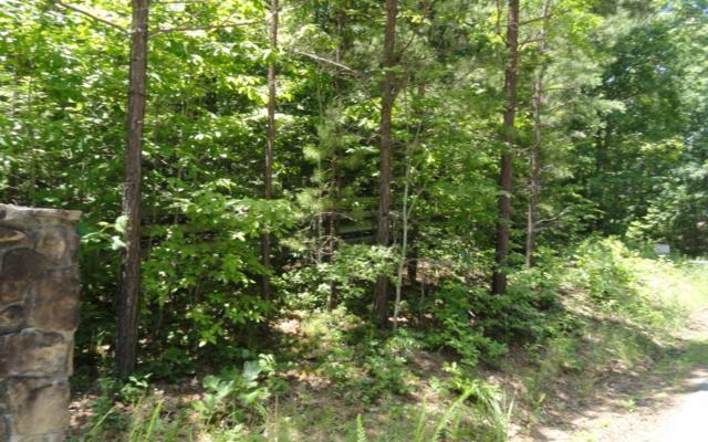 LOT 2 Sharptop View, Blairsville, GA 30512 (MLS #271356) :: RE/MAX Town & Country