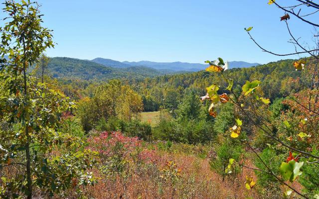 4 Town Creek Overlook, Blairsville, GA 30512 (MLS #271500) :: RE/MAX Town & Country