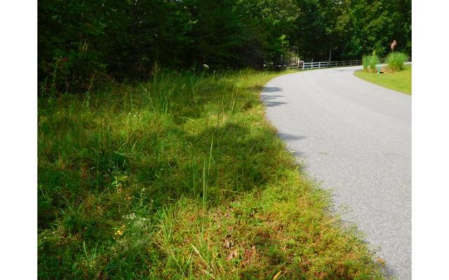 LT 4 Spring Hill Lane, Blairsville, GA 30512 (MLS #271571) :: RE/MAX Town & Country