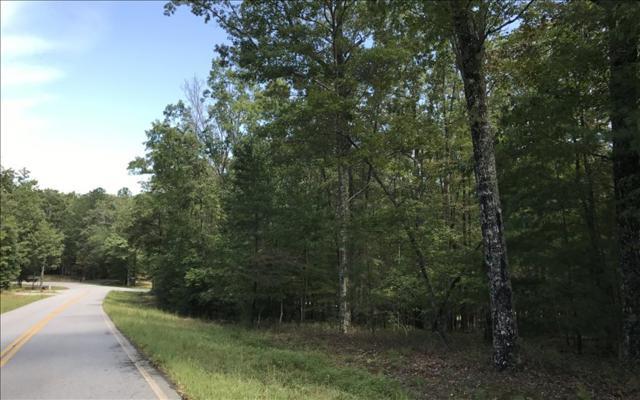 Timber Ridge Rd, Blairsville, GA 30512 (MLS #271630) :: RE/MAX Town & Country