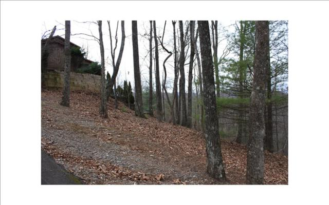 LOT R Moon Shadow View N, Blairsville, GA 30512 (MLS #271817) :: RE/MAX Town & Country