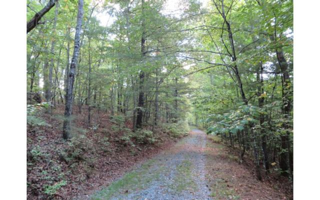 LOT8 Redbay Way, Mineral Bluff, GA 30559 (MLS #271874) :: RE/MAX Town & Country