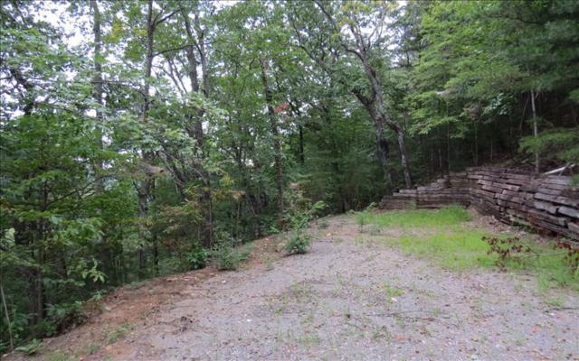 Creekview Drive, Ellijay, GA 30536 (MLS #271924) :: RE/MAX Town & Country