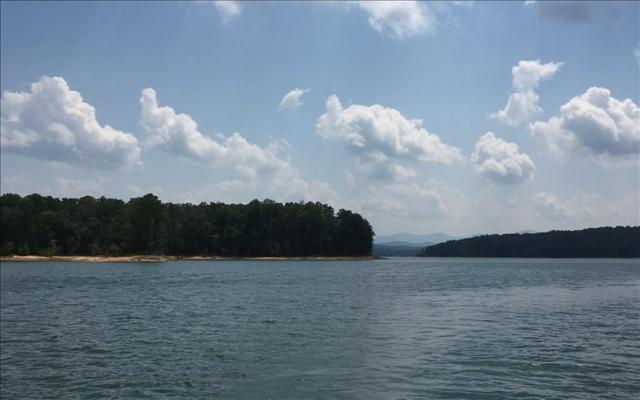 LT123 Notla Island Drive, Blairsville, GA 30512 (MLS #271982) :: RE/MAX Town & Country