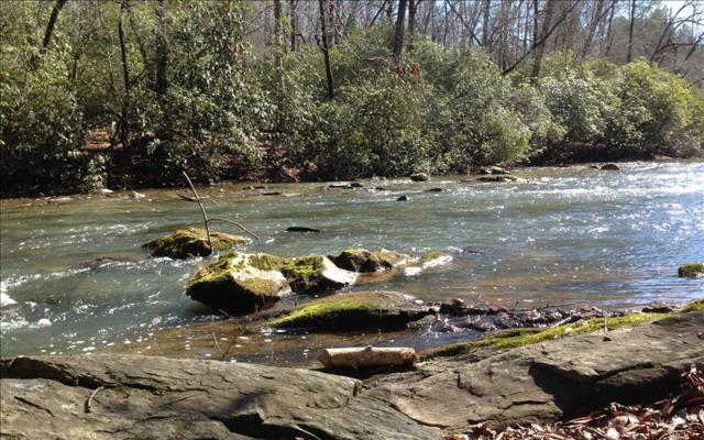 66 Holly Trail, Ellijay, GA 30536 (MLS #271984) :: RE/MAX Town & Country