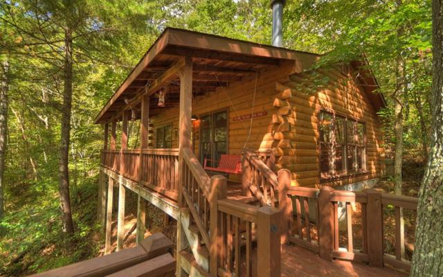 137 Little Beaver Drive, Cherry Log, GA 30522 (MLS #272097) :: RE/MAX Town & Country