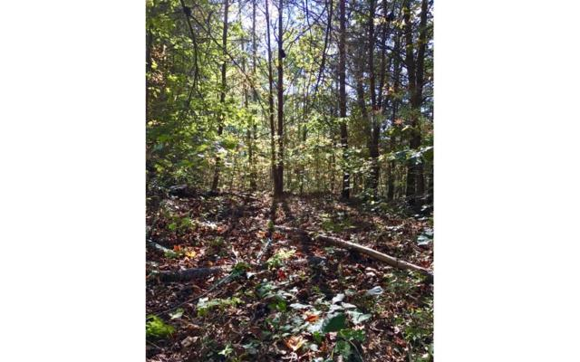 LOT 2 Caylee Ann Drive, Blairsville, GA 30512 (MLS #272145) :: RE/MAX Town & Country