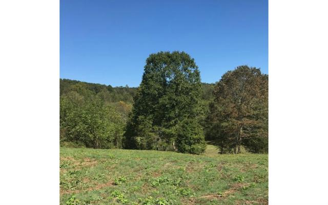 #7&8 Misty Creek, Young Harris, GA 30582 (MLS #272255) :: RE/MAX Town & Country