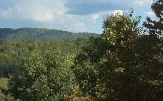 LT 25 Sweetwater Hills, Hayesville, NC 28904 (MLS #272266) :: RE/MAX Town & Country