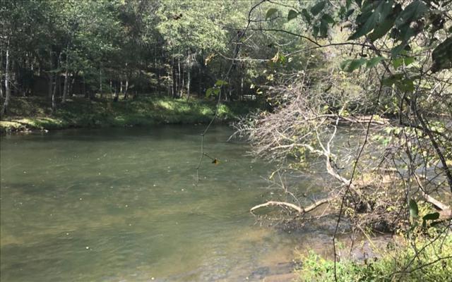 Lot 11 Riverside Dr, Blue Ridge, GA 30513 (MLS #272271) :: RE/MAX Town & Country