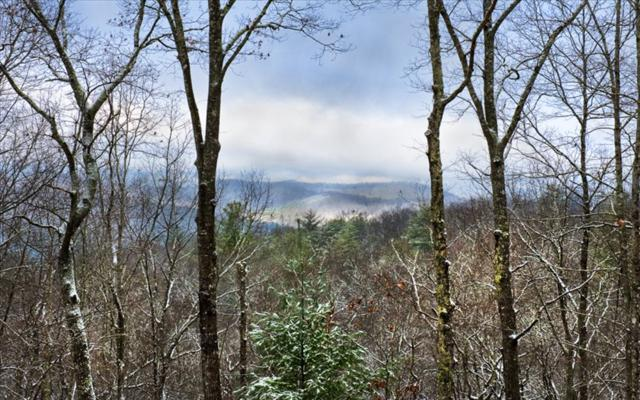 Noontootla Overlook, Blue Ridge, GA 30513 (MLS #272322) :: RE/MAX Town & Country