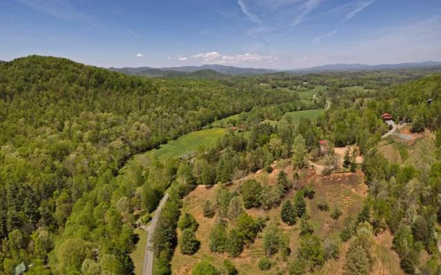 937 Cashes Valley Road, Cherry Log, GA 30522 (MLS #272335) :: RE/MAX Town & Country