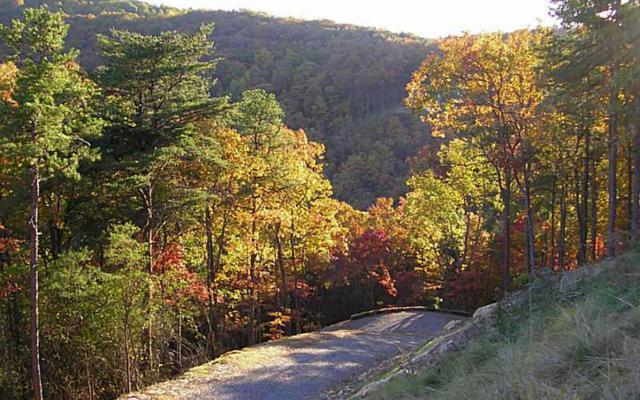 98 Sharp Mountain Pkwy, Jasper, GA 30143 (MLS #272437) :: RE/MAX Town & Country