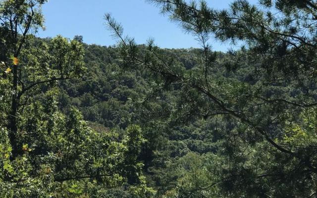 LOT13 Scenic Views, Hiawassee, GA 30546 (MLS #272462) :: RE/MAX Town & Country