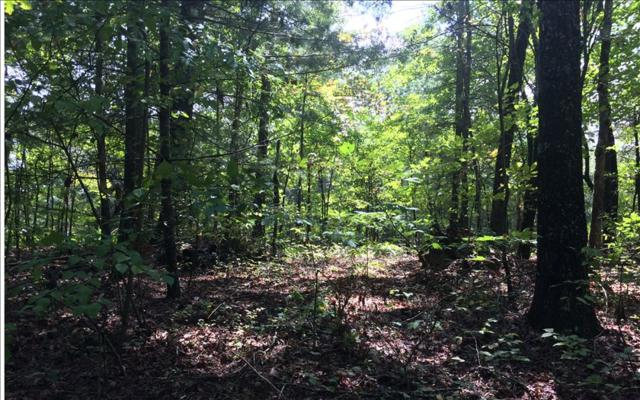 22 AC Marble City Road, Mineral Bluff, GA 30559 (MLS #272541) :: RE/MAX Town & Country