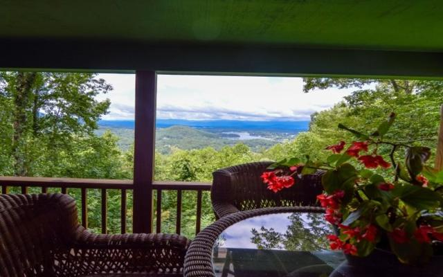 1798 Ivy Mountain Rd, Hiawassee, GA 30546 (MLS #272598) :: RE/MAX Town & Country