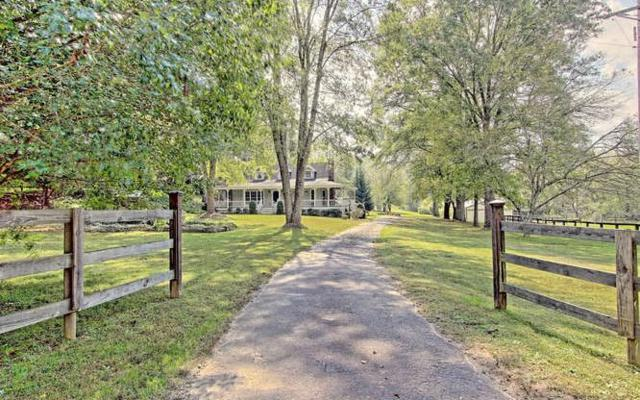 643 Ray Lewis Road, Blairsville, GA 30512 (MLS #272614) :: RE/MAX Town & Country